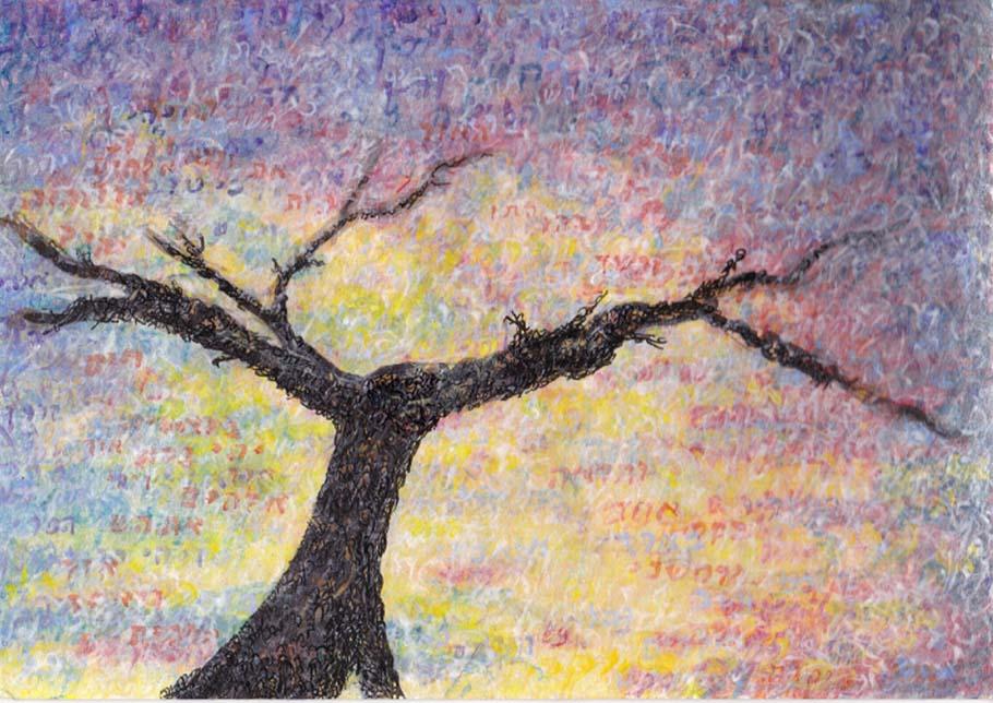 Leaving Winter Sunset Tree by Judy Rey Wasserman