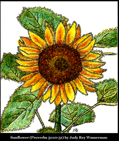 Sunflower by Judy Rey Wasserman