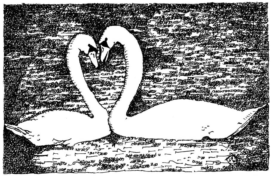 Song of Songs Swan Couple by Judy Rey Wasserman
